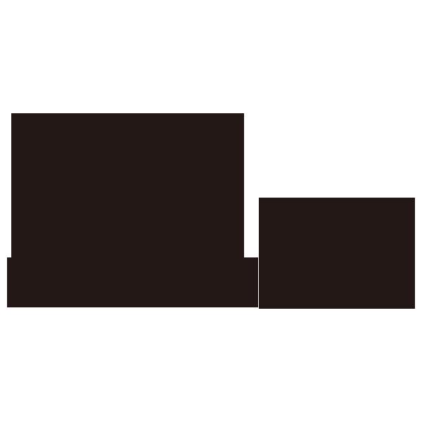 bialetti_logo
